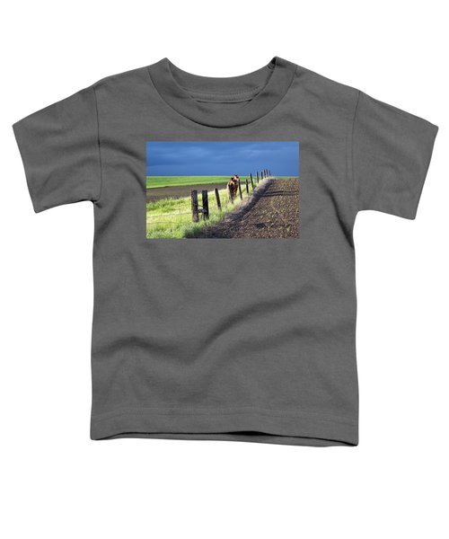 Two Horses In The Palouse Toddler T-Shirt