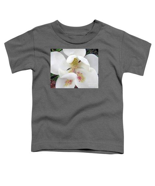 Unfolding Beauty Of Magnolia Toddler T-Shirt