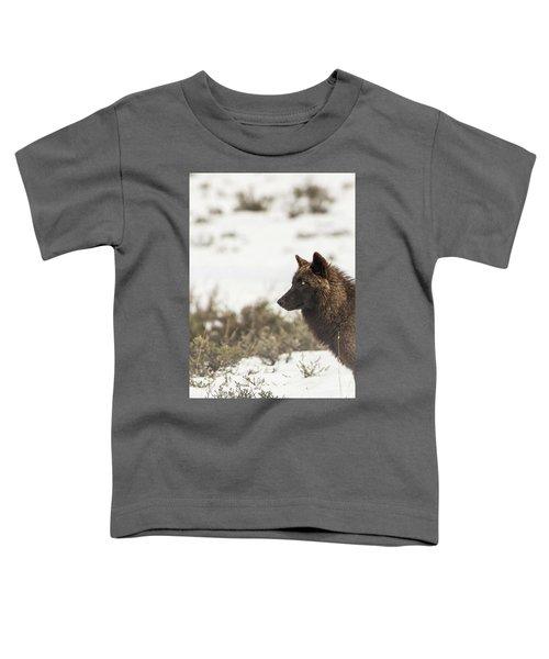 W11 Toddler T-Shirt