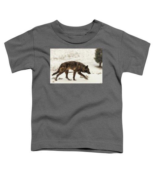 W13 Toddler T-Shirt