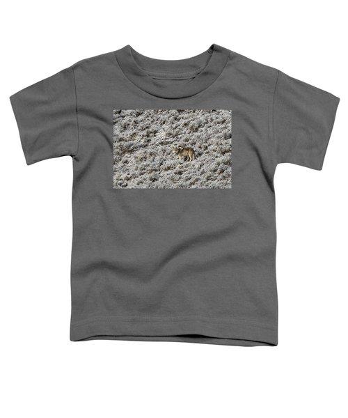 W17 Toddler T-Shirt