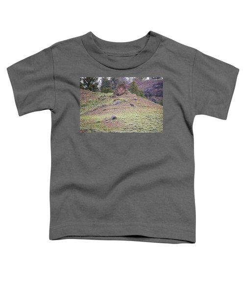 W22 Toddler T-Shirt