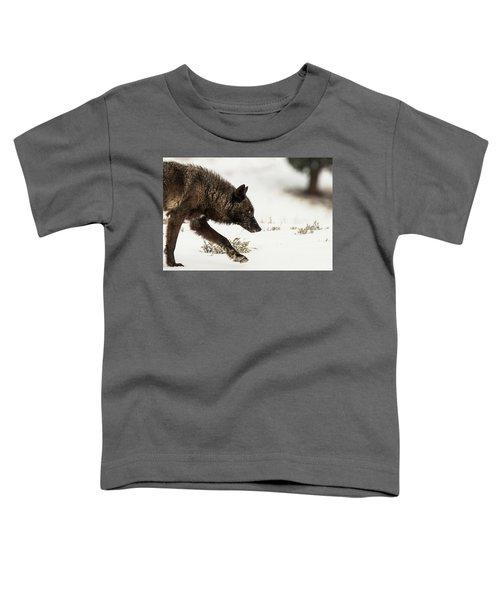 W41 Toddler T-Shirt
