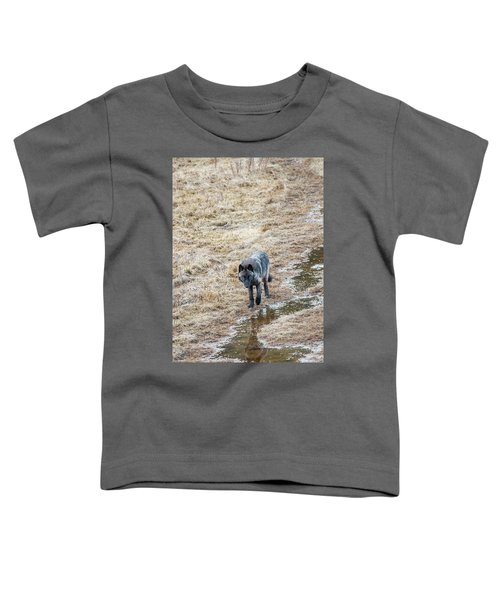 W51 Toddler T-Shirt