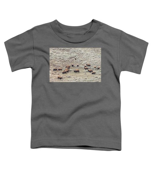 W56 Toddler T-Shirt