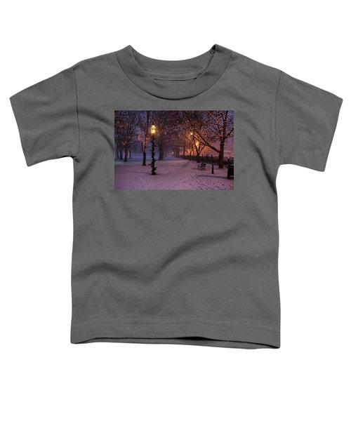 Walking The Path On Salem Ma Common Toddler T-Shirt