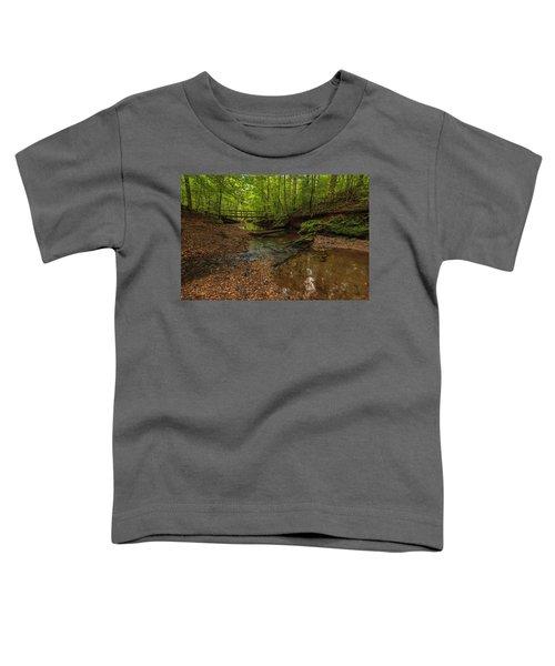 Walnut Creek Toddler T-Shirt