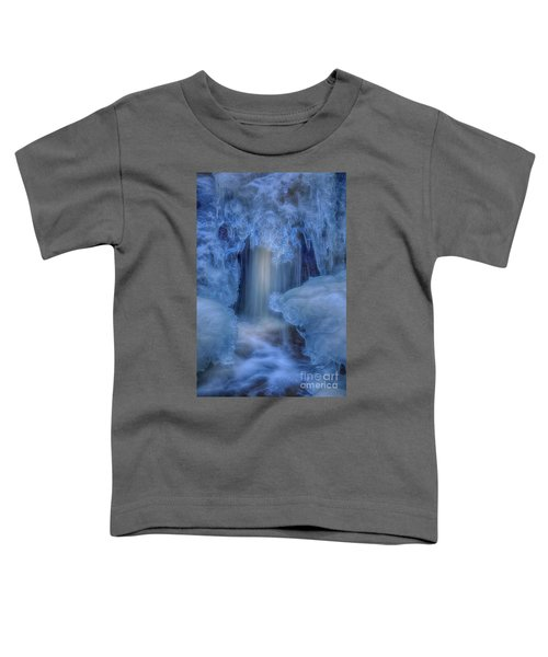 Water And Ice 8 Toddler T-Shirt