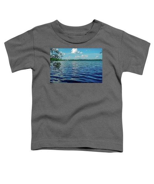 Waves On Lake Harriet Toddler T-Shirt