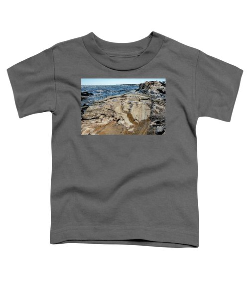 Wet Rocks Toddler T-Shirt