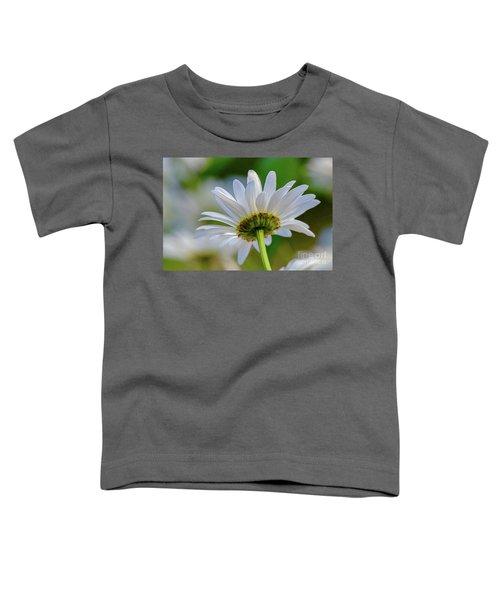 Fresh As A Daisy Toddler T-Shirt