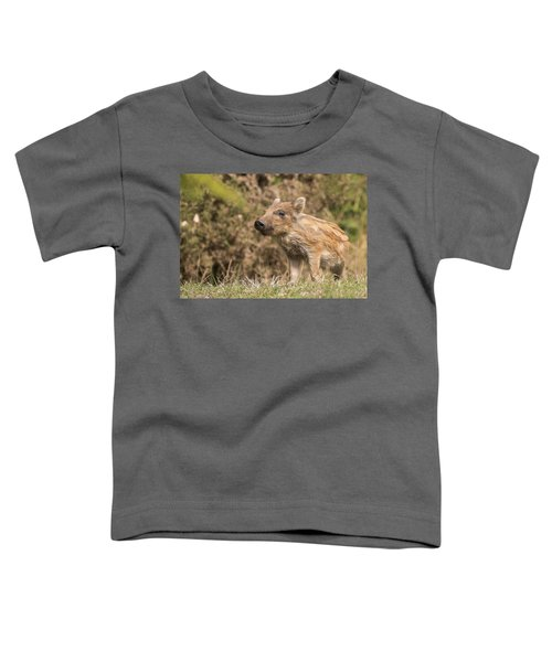 Wild Boar Humbug Toddler T-Shirt