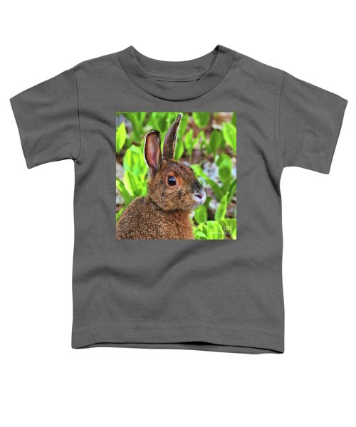 Wild Rabbit Toddler T-Shirt
