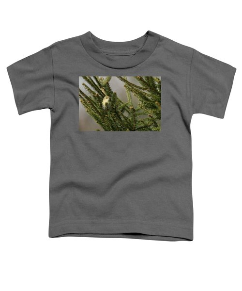 Willow Warbler Toddler T-Shirt