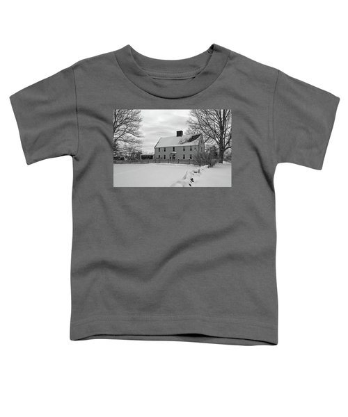 Winter At Noyes House Toddler T-Shirt