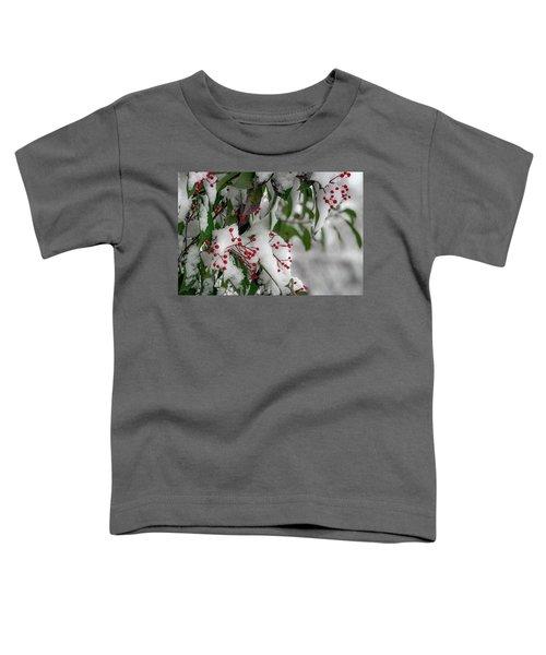 Winter Berries Toddler T-Shirt