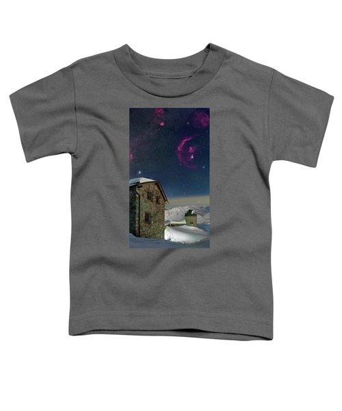 Winter Bounty Toddler T-Shirt
