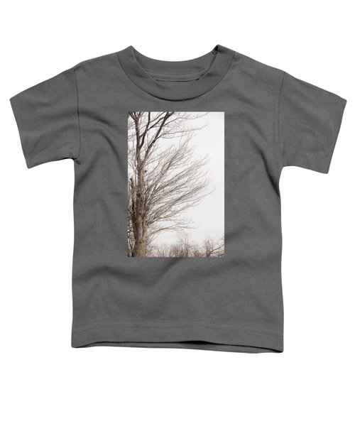 Winter Hoarfrost Toddler T-Shirt