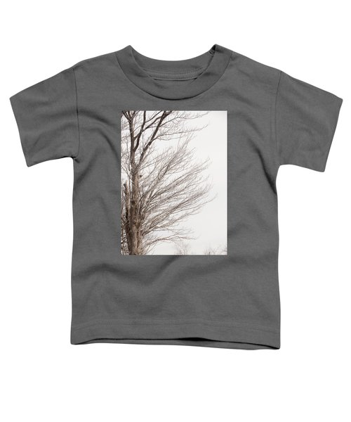 Winter Hoarfrost Toddler T-Shirt