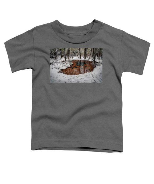 Winter Reflections Toddler T-Shirt