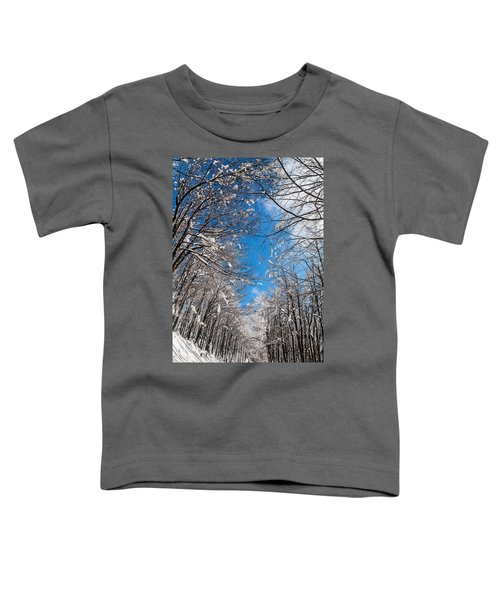 Winter Road Toddler T-Shirt