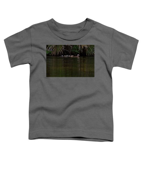 Wood Duck And Ducklings Toddler T-Shirt