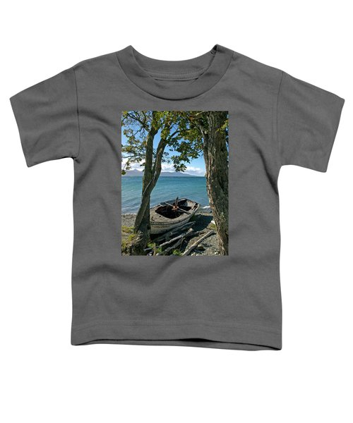 Wrecked Boat Patagonia Toddler T-Shirt