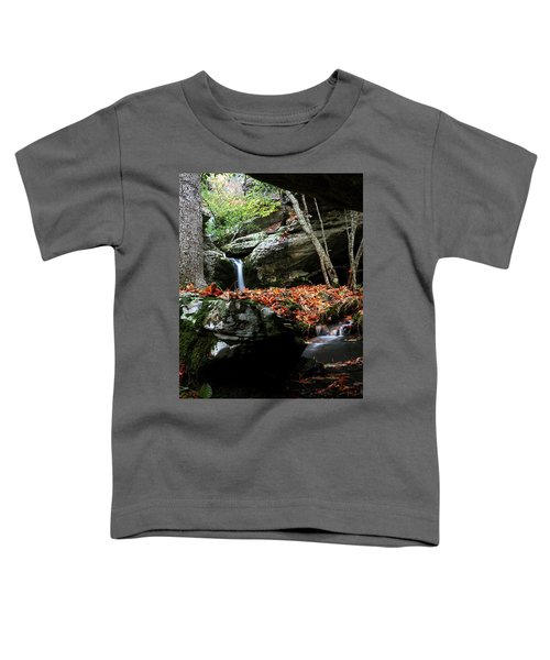 Yellow Cheek Valley Toddler T-Shirt