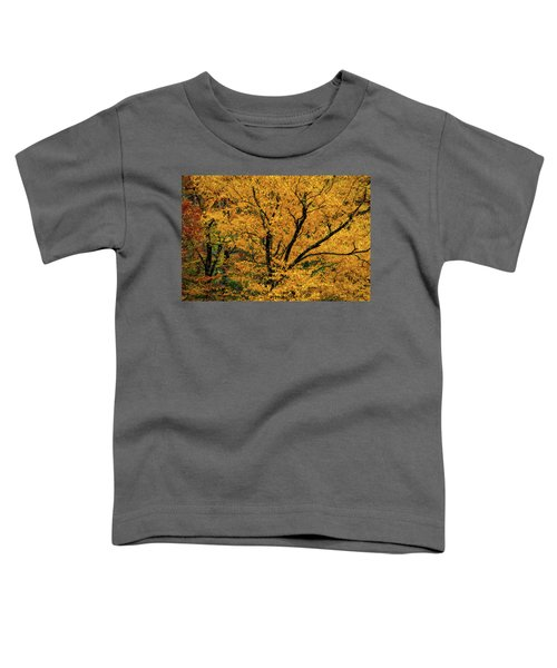 Yellow Tree Leaf Brilliance  Toddler T-Shirt