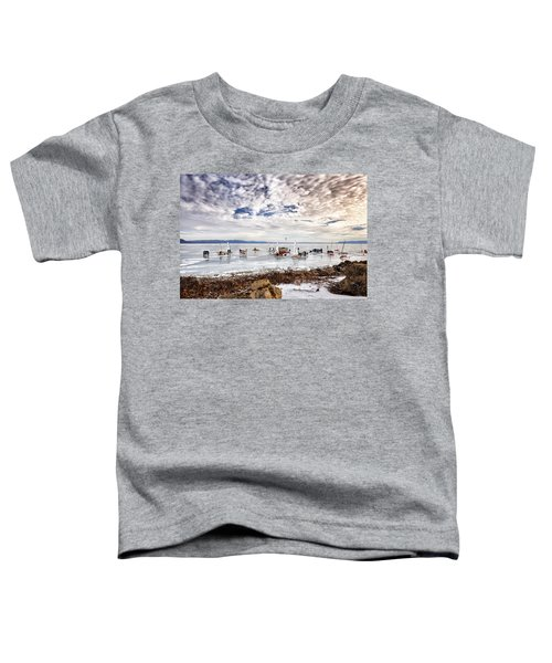 Ice Boats On Lake Pepin Toddler T-Shirt