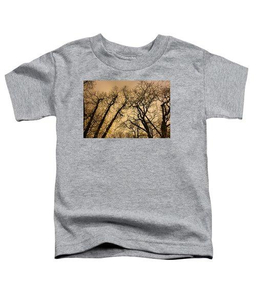 Quarrel Toddler T-Shirt