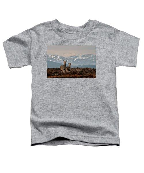 Sika Deer Toddler T-Shirt