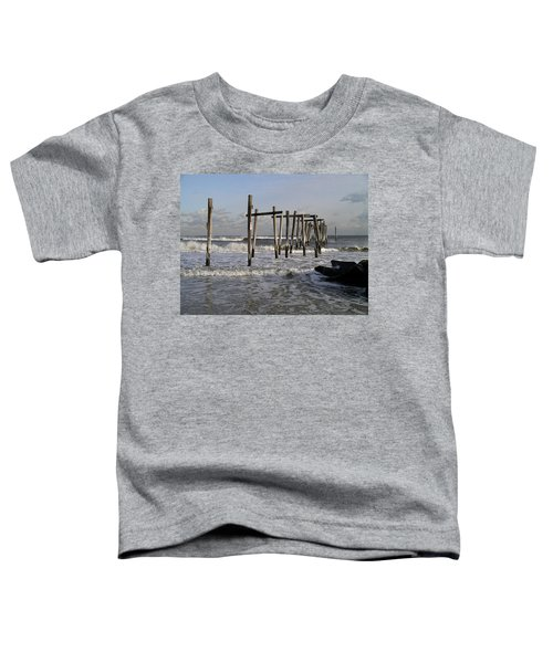 59th St. Pier Toddler T-Shirt