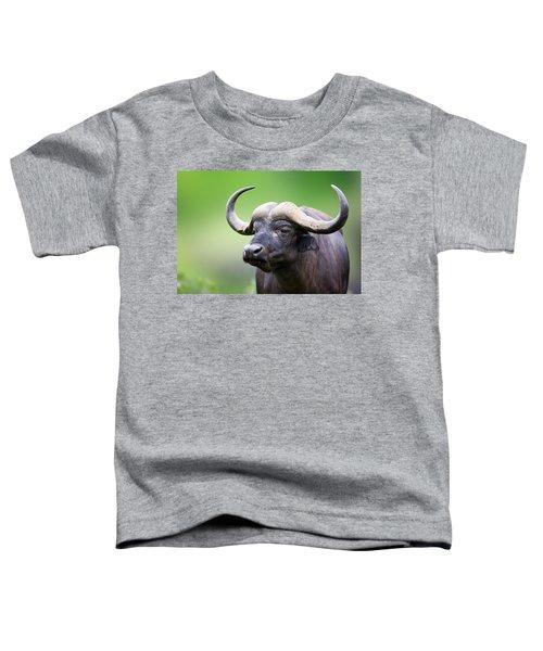 African Buffalo Portrait Toddler T-Shirt