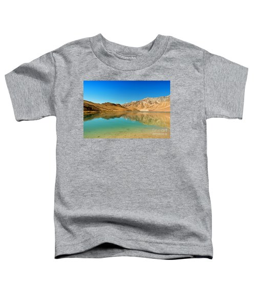 Chandratal Lake Toddler T-Shirt