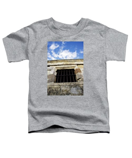 Convict Cell Toddler T-Shirt