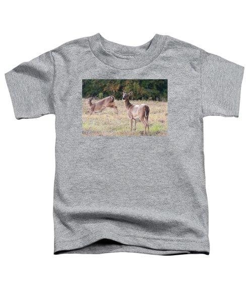 Deer At Paynes Prairie Toddler T-Shirt