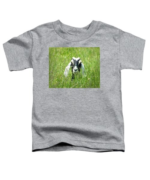 Goat Toddler T-Shirt