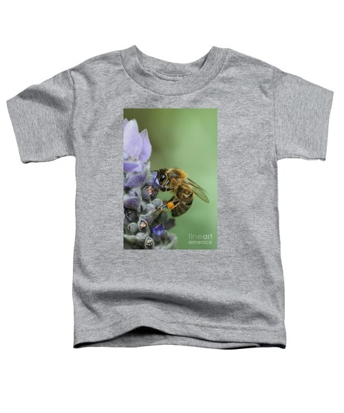 Happy Bee Toddler T-Shirt