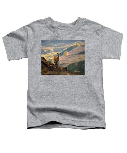 Red Deer Calf Toddler T-Shirt