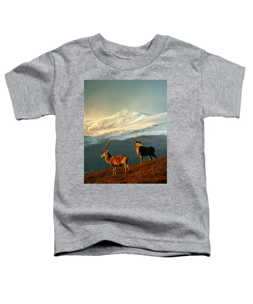Red Deer Stags Toddler T-Shirt