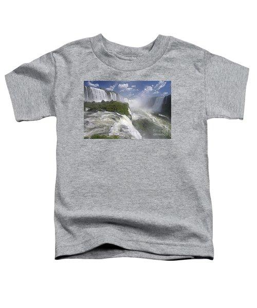 111230p122 Toddler T-Shirt