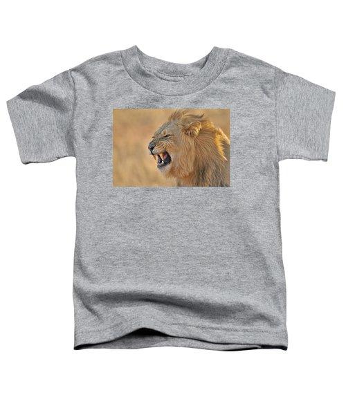 120118p081 Toddler T-Shirt