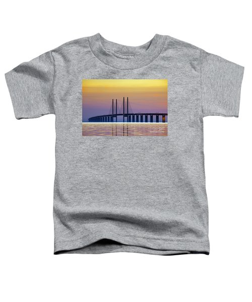 121213p214 Toddler T-Shirt
