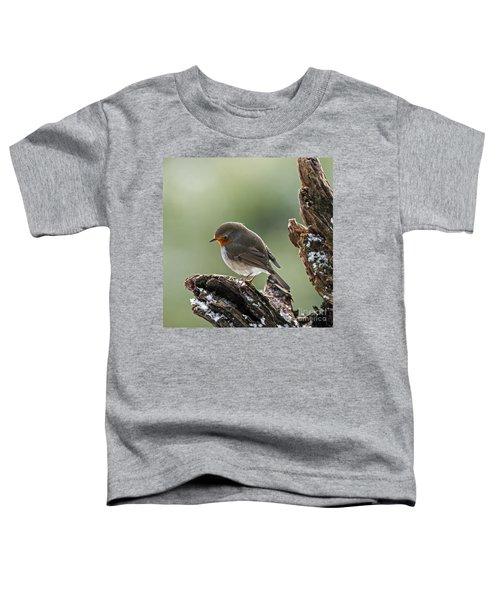 130215p300 Toddler T-Shirt