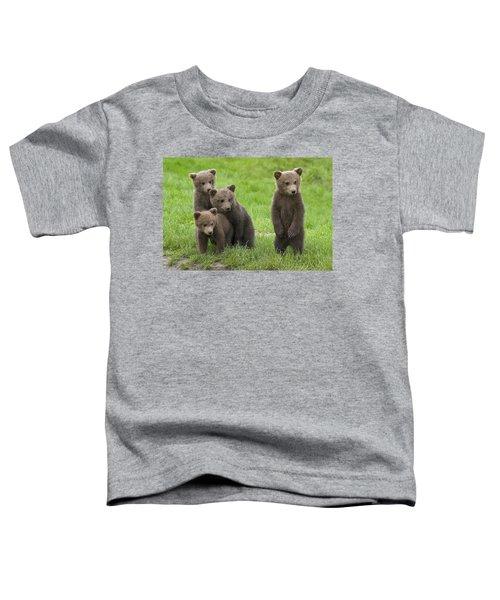 131018p260 Toddler T-Shirt