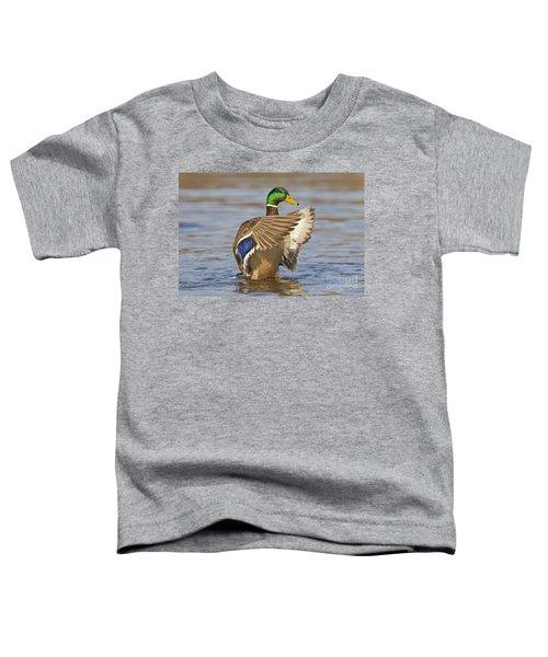 140314p301 Toddler T-Shirt