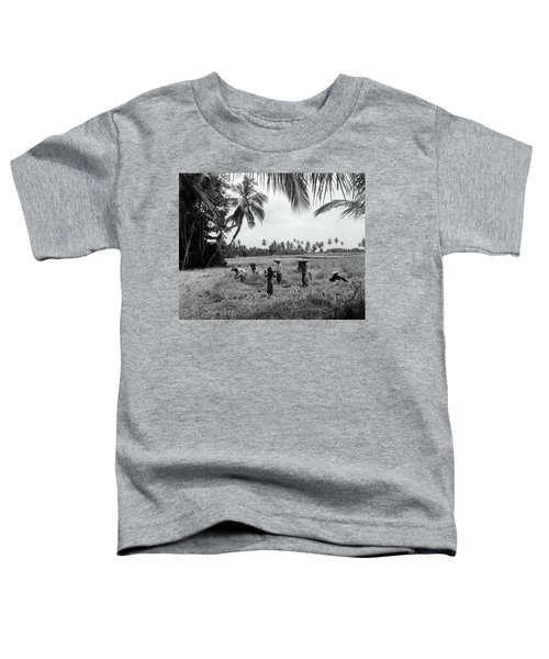 1920s 1930s 7 Balinese Workers In Rice Toddler T-Shirt