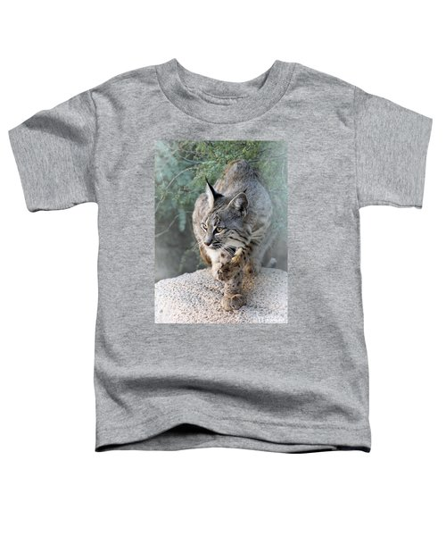 I Was Grooming Toddler T-Shirt