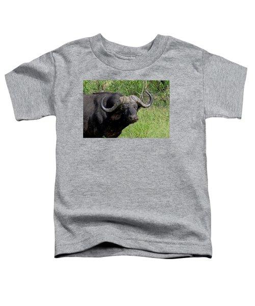 Cape Buffalo Toddler T-Shirt